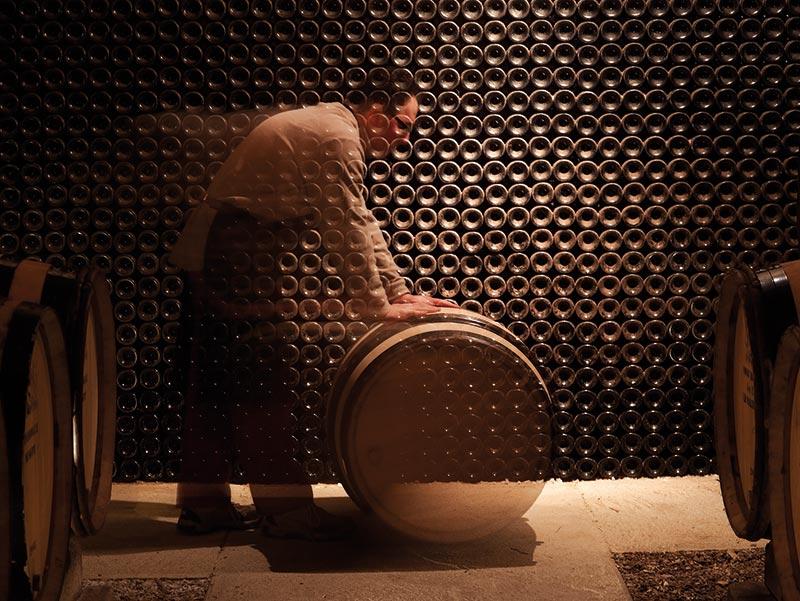 vinification-elevage