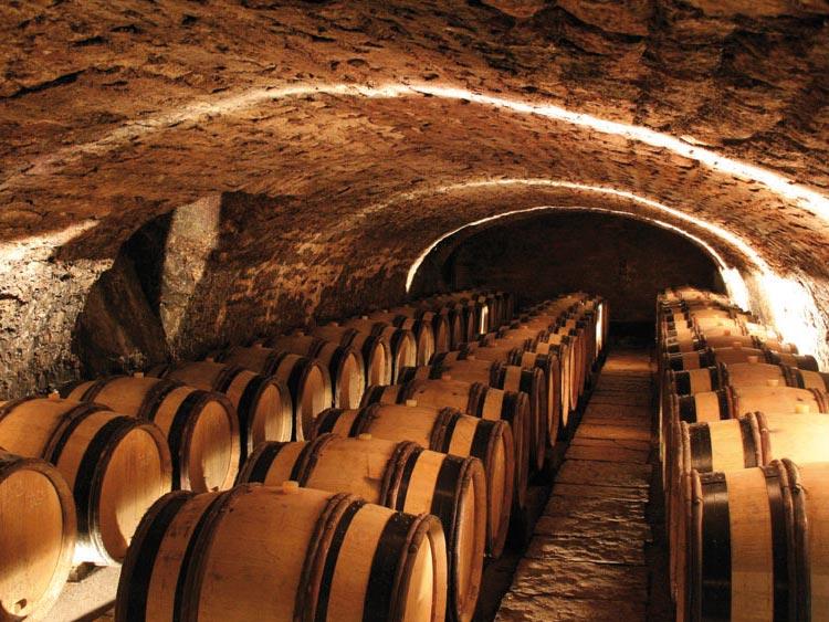 vinification-elevage2